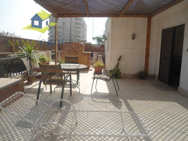 Furnished penthouse Roof top Apartment For Rent In Maadi
