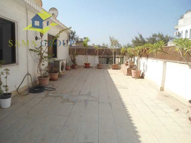 Furnished penthouse Roof top Apartment For Rent In Maadi,Furnished,Penthouse NO #13