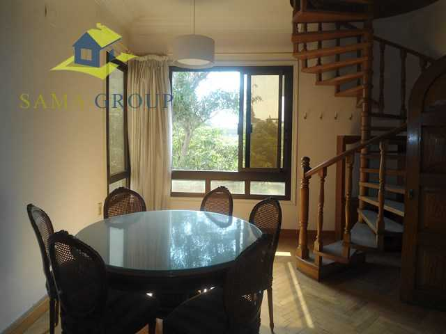 Furnished penthouse Roof top Apartment For Rent In Maadi,Furnished,Penthouse NO #12