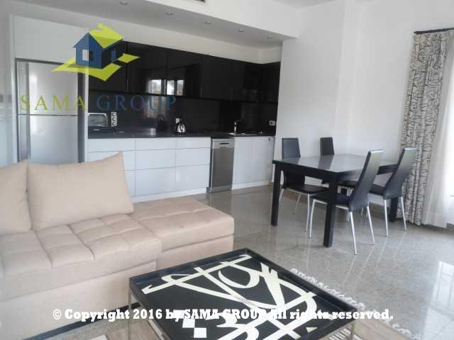 Modern Furnished Studio For Rent In Maadi Saraiat,Furnished,Studio NO #2