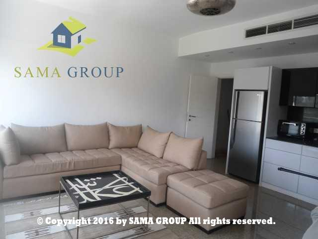 Modern Furnished Studio For Rent In Maadi Saraiat,Furnished,Studio NO #4