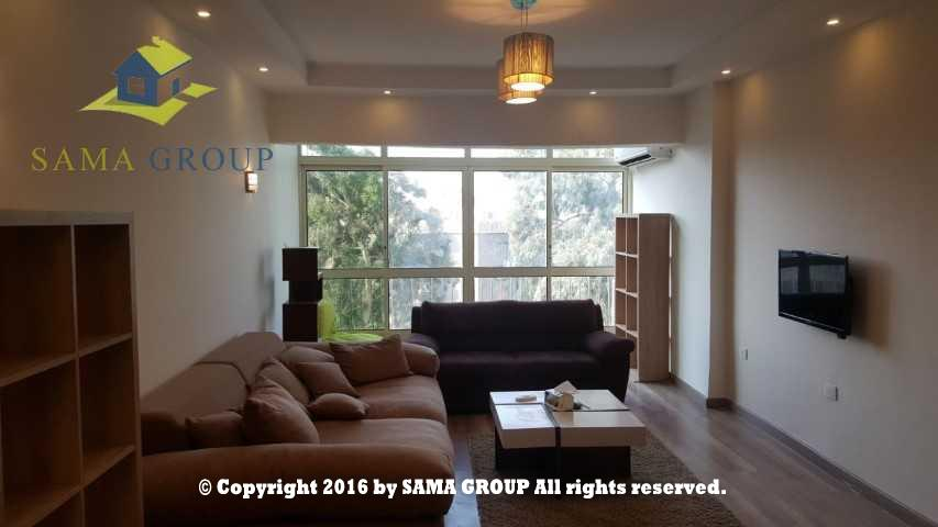 Modern Furnished Apartment For Rent In Maadi,Furnished,Apartment NO #3