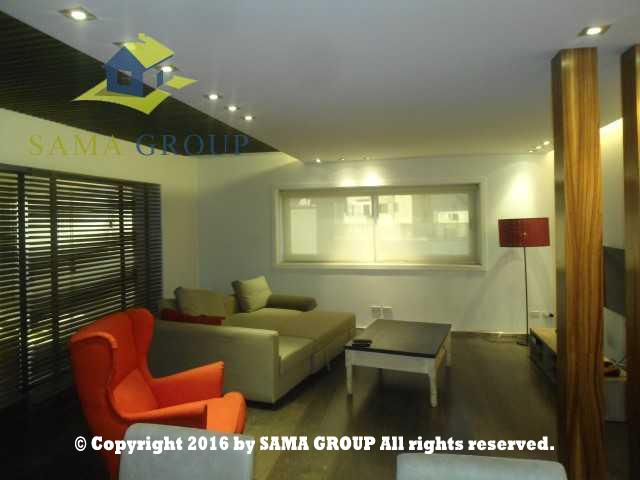 Ultra Modern Penthouse For Rent In Maadi,Modern Furnished,Penthouse NO #8