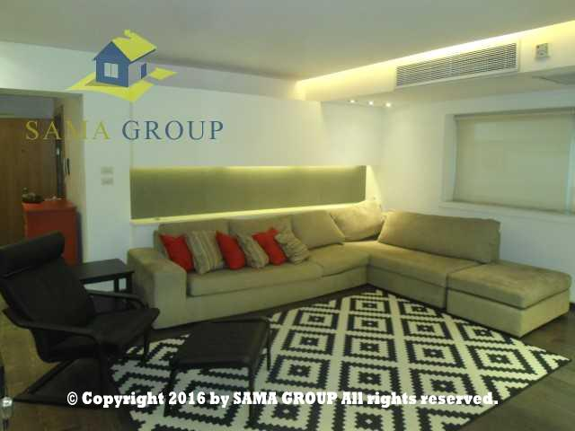 Ultra Modern Penthouse For Rent In Maadi,Modern Furnished,Penthouse NO #11