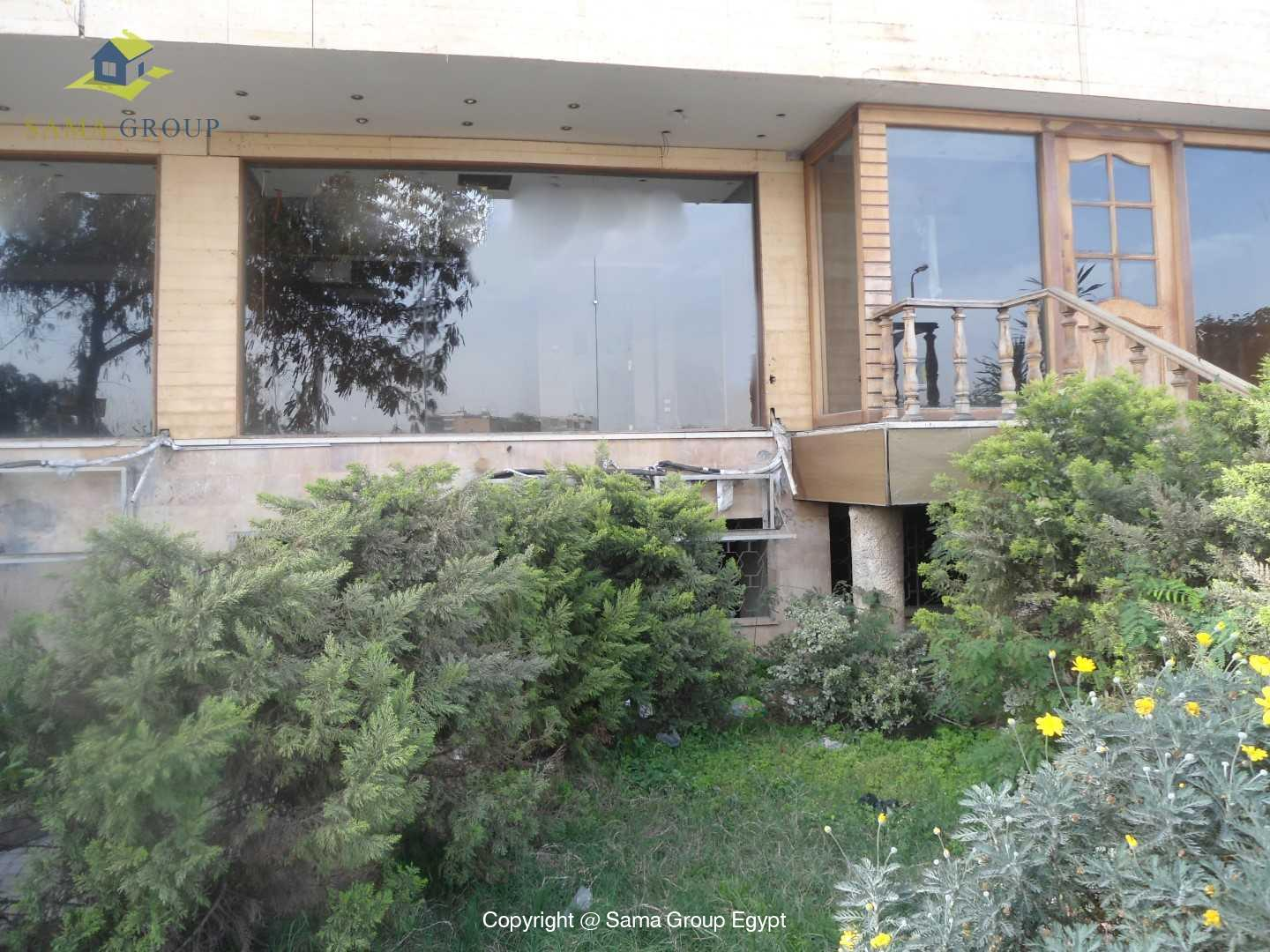 Shop For Rent In Maadi,Furnished,Commercial Stores and Shops NO #4
