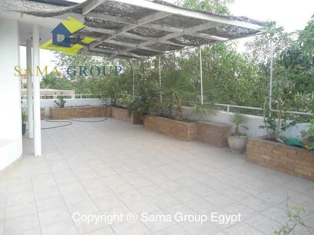 Roof top For Rent In Maadi,Furnished,Roof Top NO #2
