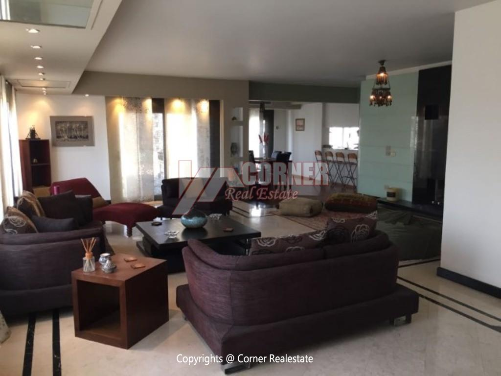 Modern Penthouse For Rent In Maadi Degla,Modern Furnished,Penthouse NO #7