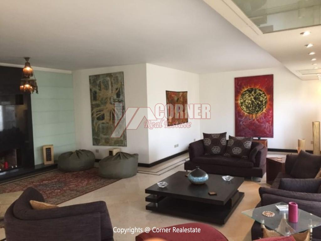 Modern Penthouse For Rent In Maadi Degla,Modern Furnished,Penthouse NO #4