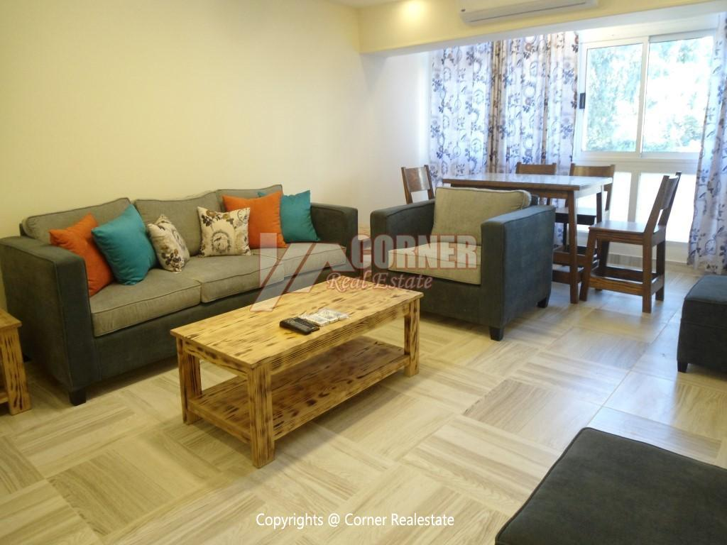 Modern Apartment For Rent In Maadi Close to CAC,Modern Furnished,Apartment NO #13