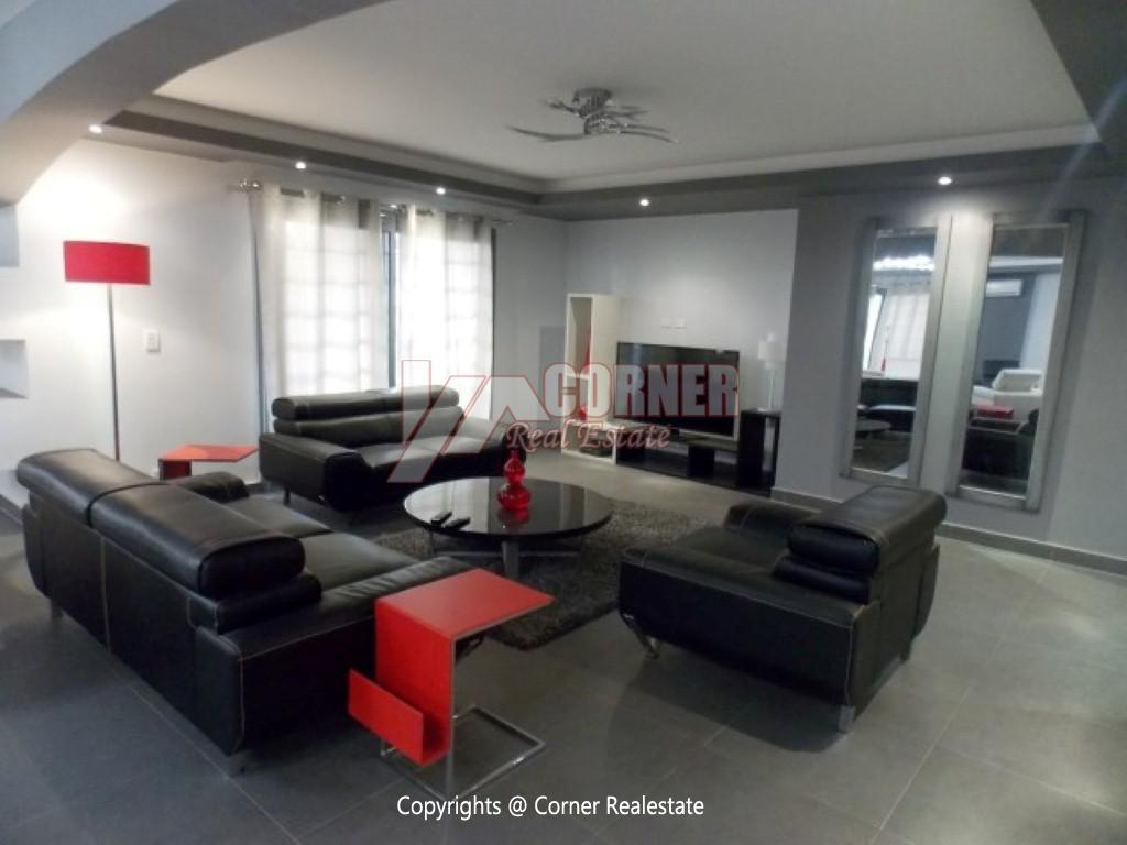 Modern Ground Floor For Rent In Maadi ,Modern Furnished,Ground Floor NO #18
