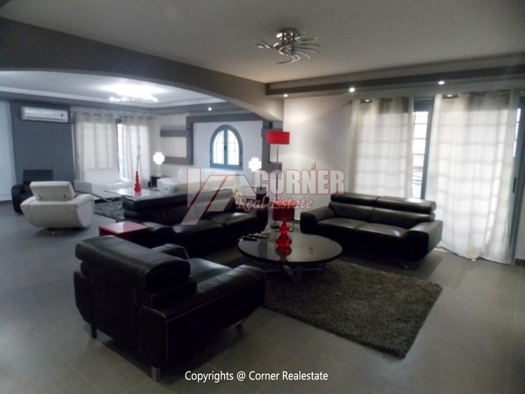 Modern Ground Floor For Rent In Maadi ,Modern Furnished,Ground Floor NO #20