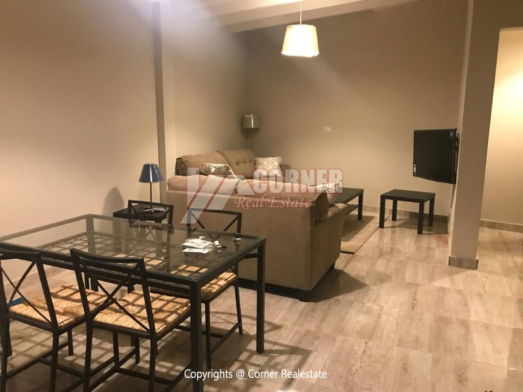 Studio For Rent In Maadi Degla With Private Garden