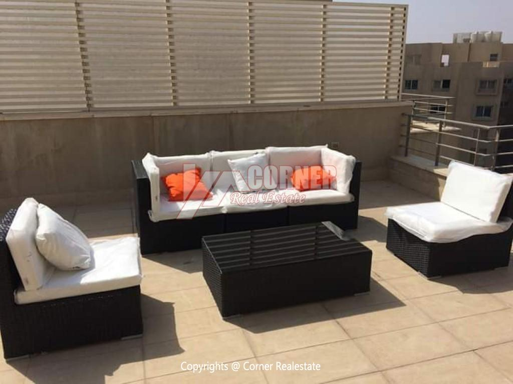 Penthouse For Sale In The Village,Modern Furnished,Penthouse NO #1