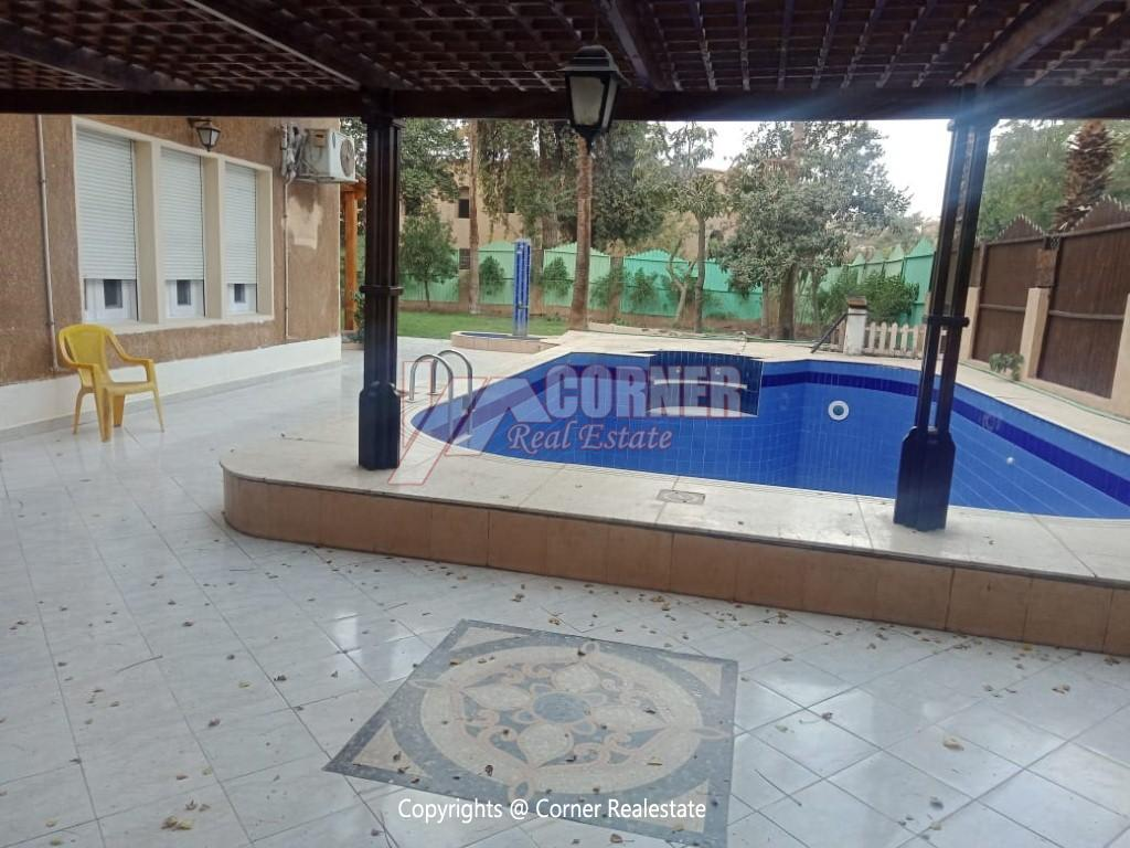 Villa With Swimming Pool For Rent In Maadi,Semi furnished,Villa NO #22