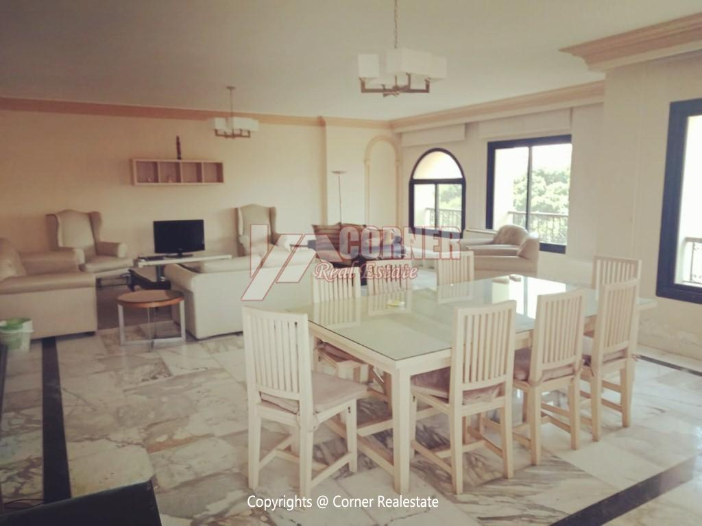 Modern Apartment For Rent In Maadi Close to CAC,Modern Furnished,Apartment NO #7