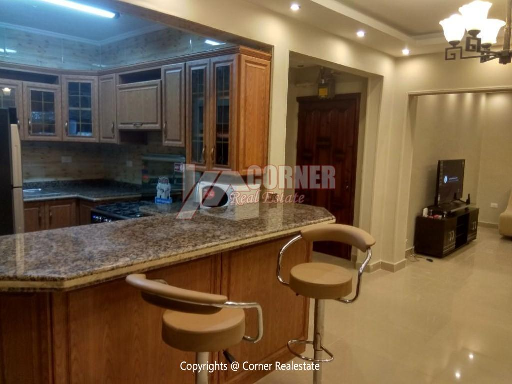 Modern Apartment For Rent In Maadi Close to CAC,Modern Furnished,Apartment NO #11