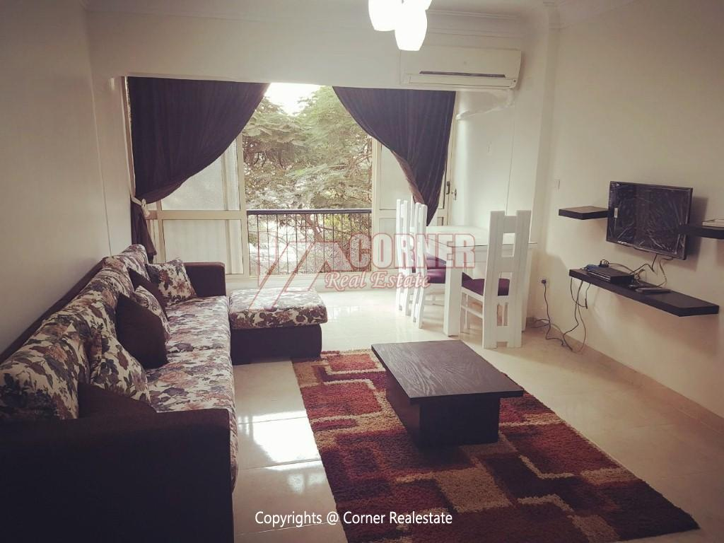 Apartment For Rent In Maadi Close to CAC,Modern Furnished,Apartment NO #1
