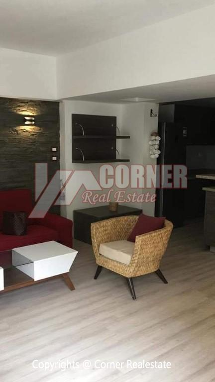 Apartment For Rent In Maadi,Modern Furnished,Ground Floor NO #12