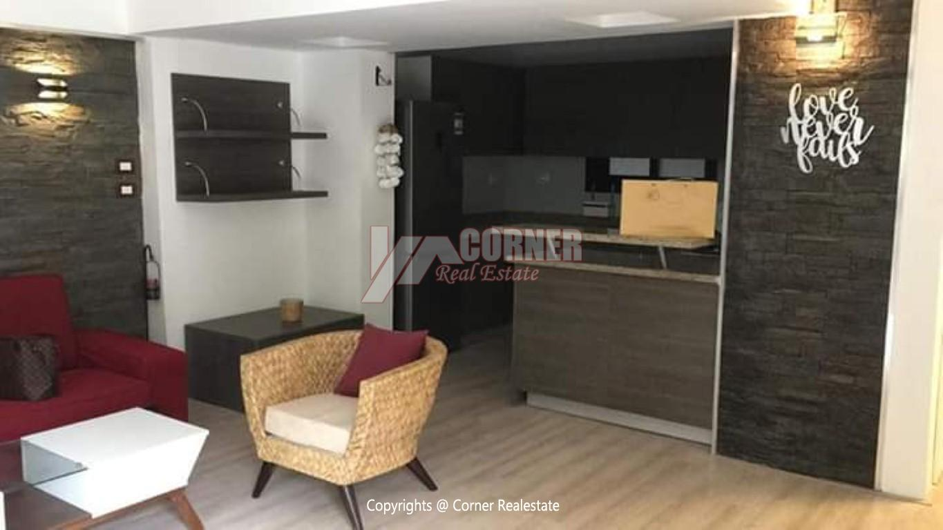 Apartment For Rent In Maadi,Modern Furnished,Ground Floor NO #3