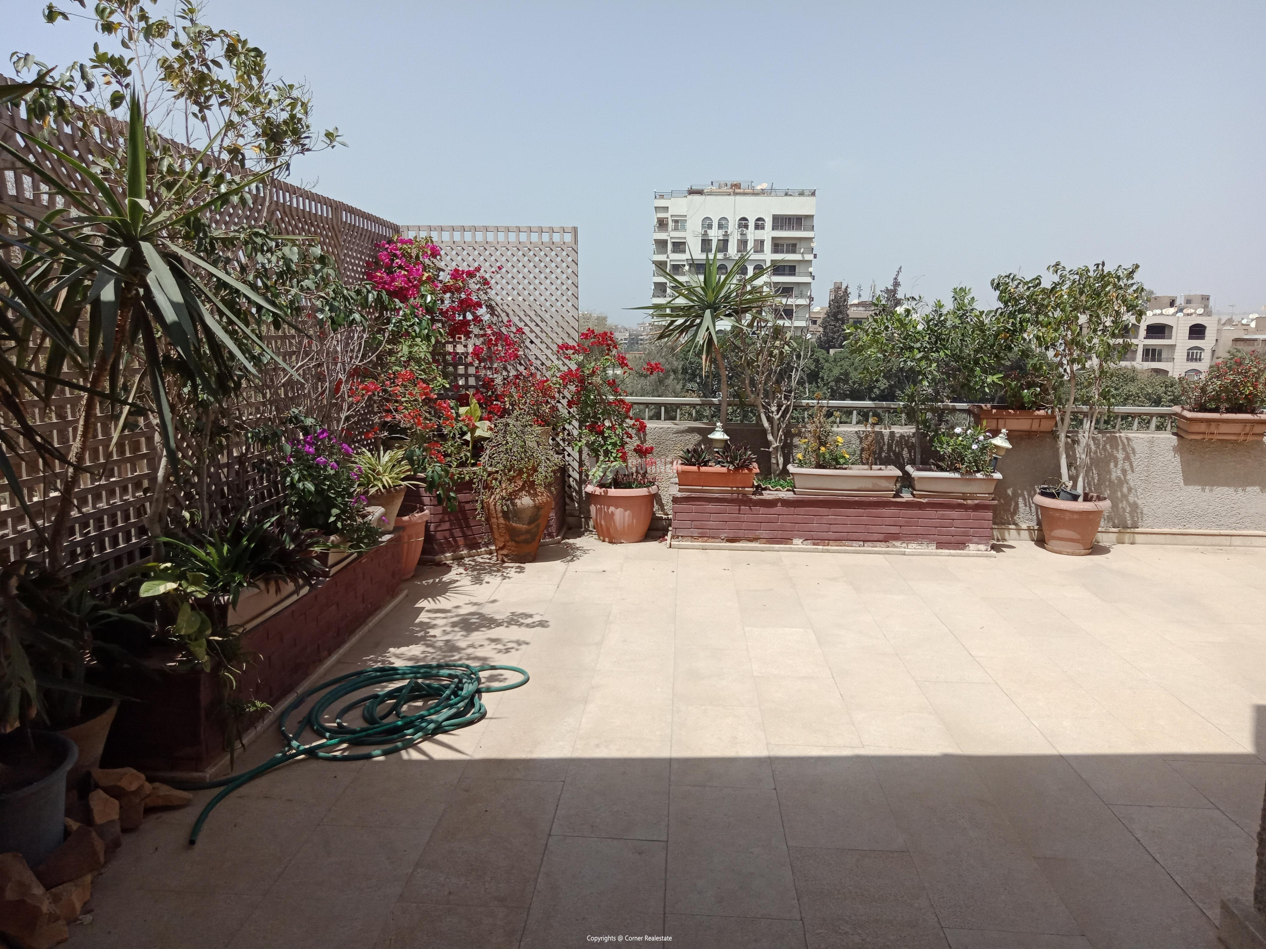 Penthouse For Rent In Maadi Degla,Furnished,Penthouse NO #13