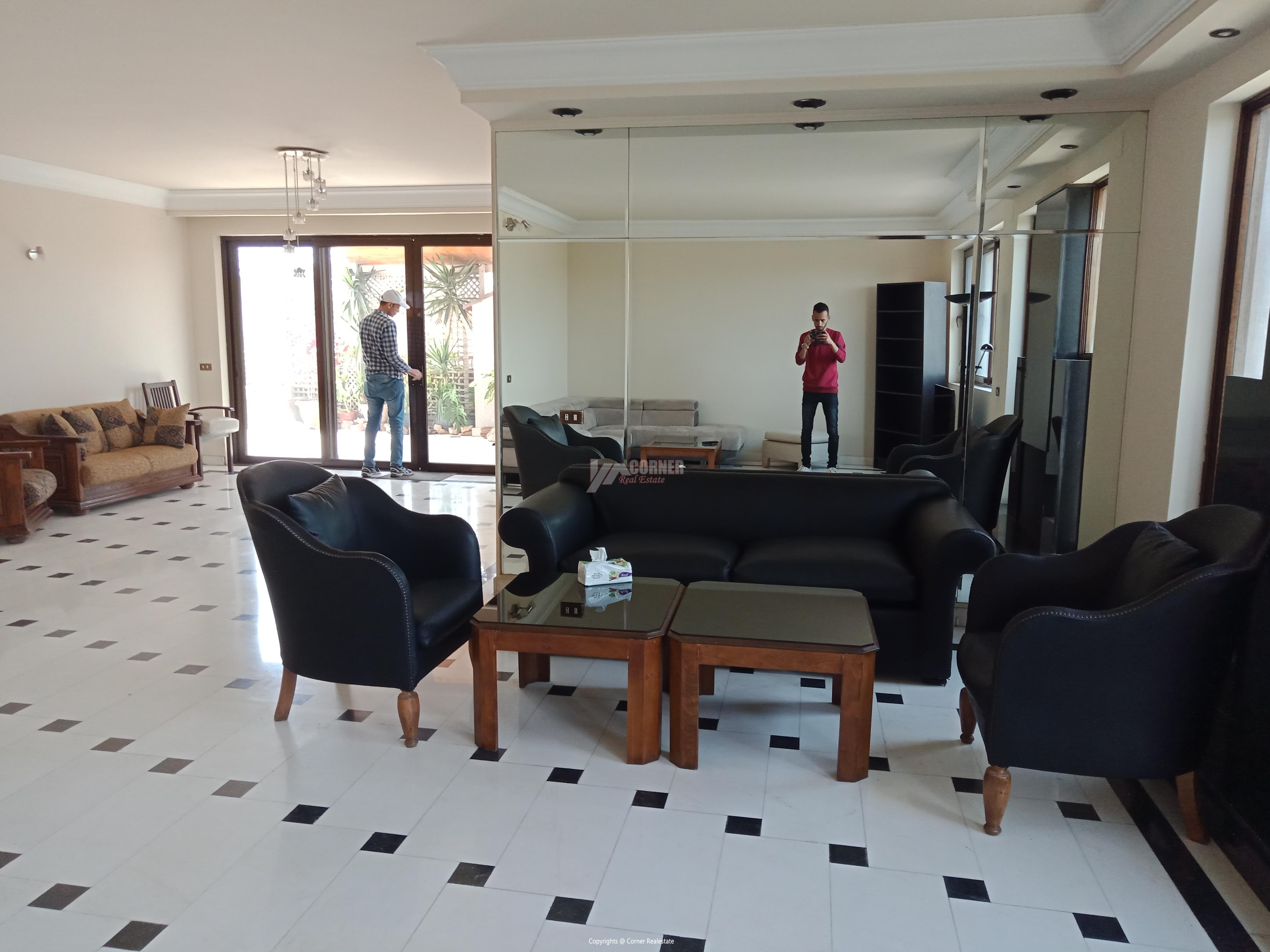 Penthouse For Rent In Maadi Degla,Furnished,Penthouse NO #12