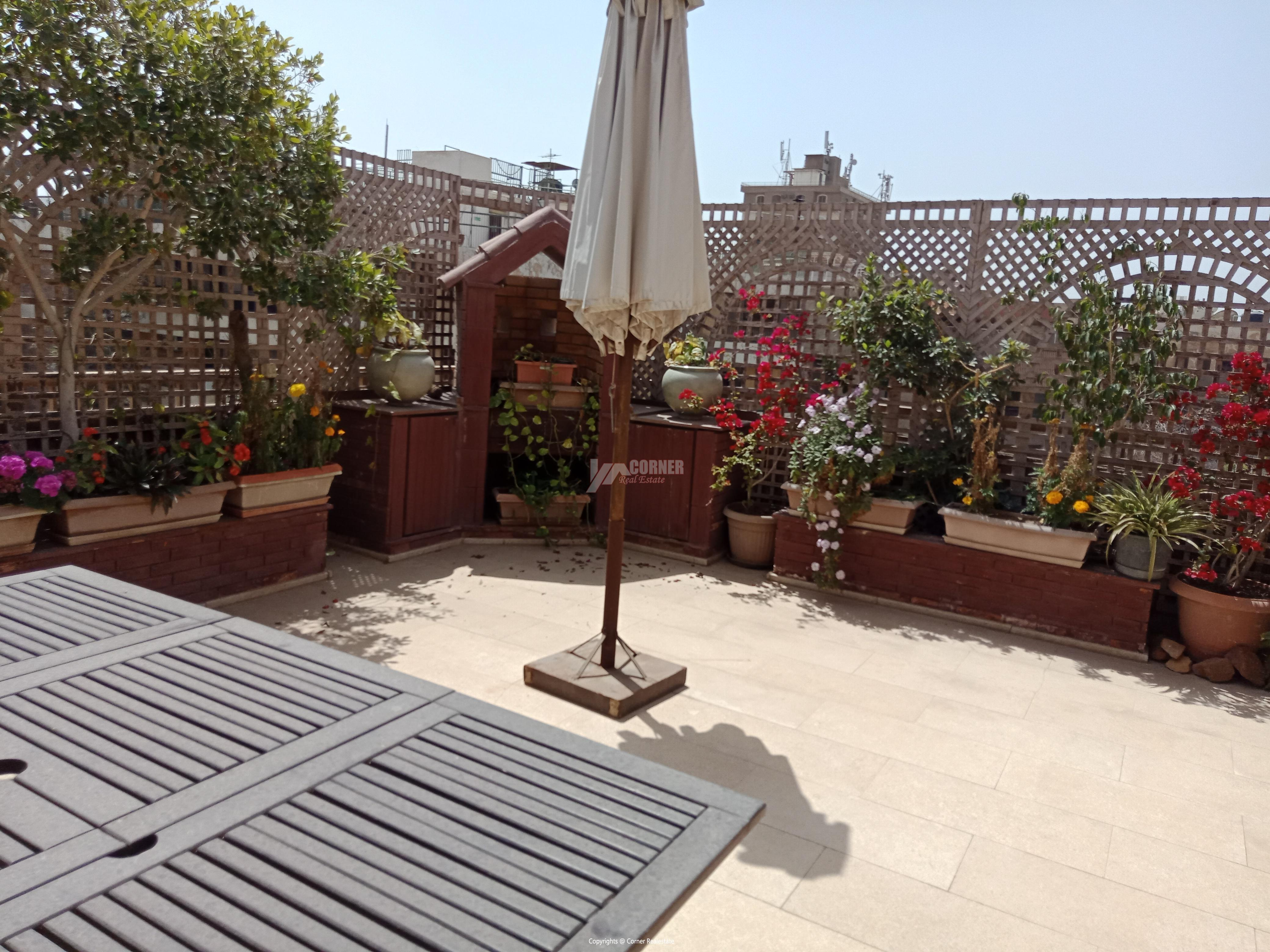 Penthouse For Rent In Maadi Degla,Furnished,Penthouse NO #11