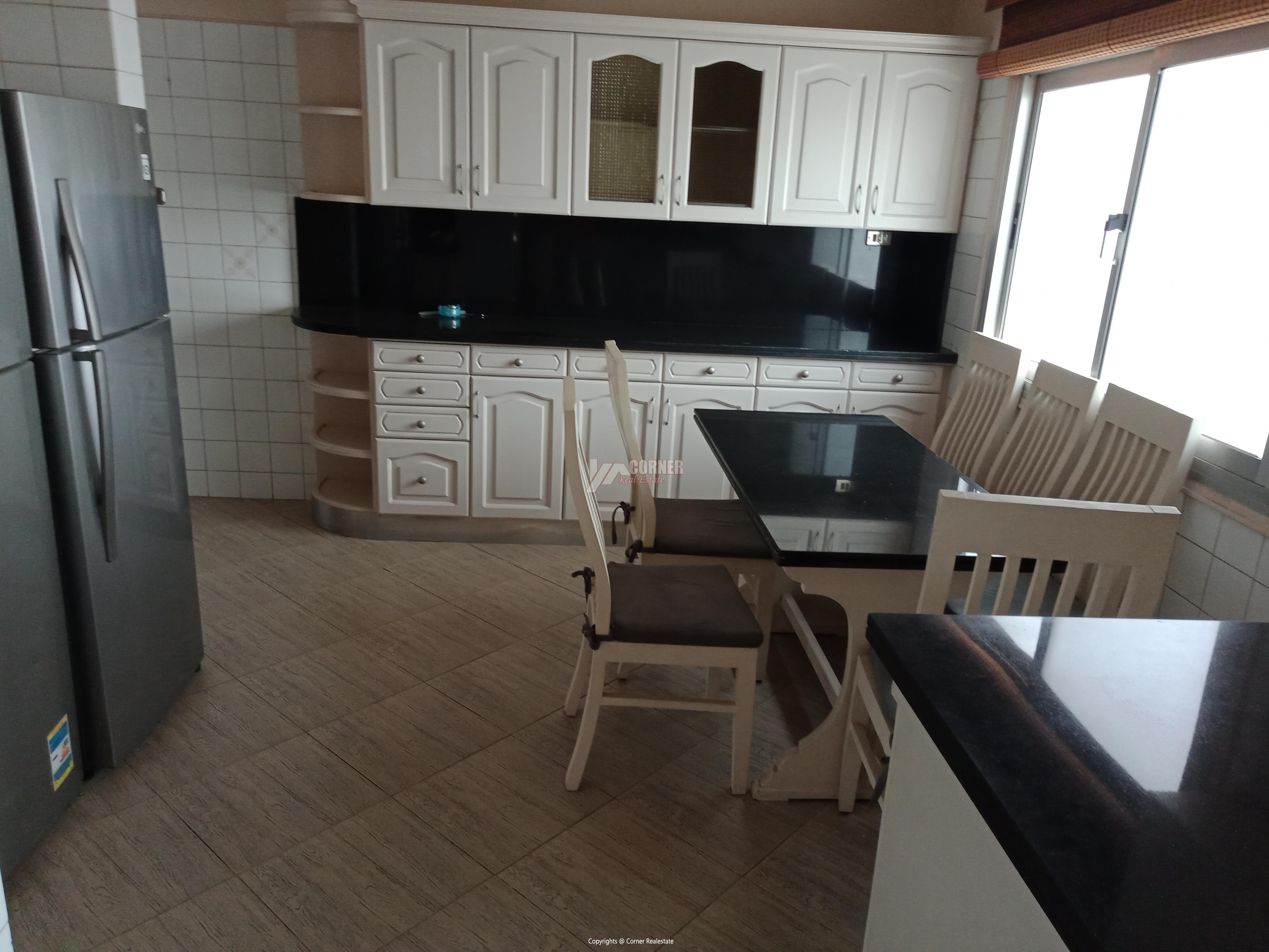 Penthouse For Rent In Maadi Degla,Furnished,Penthouse NO #5