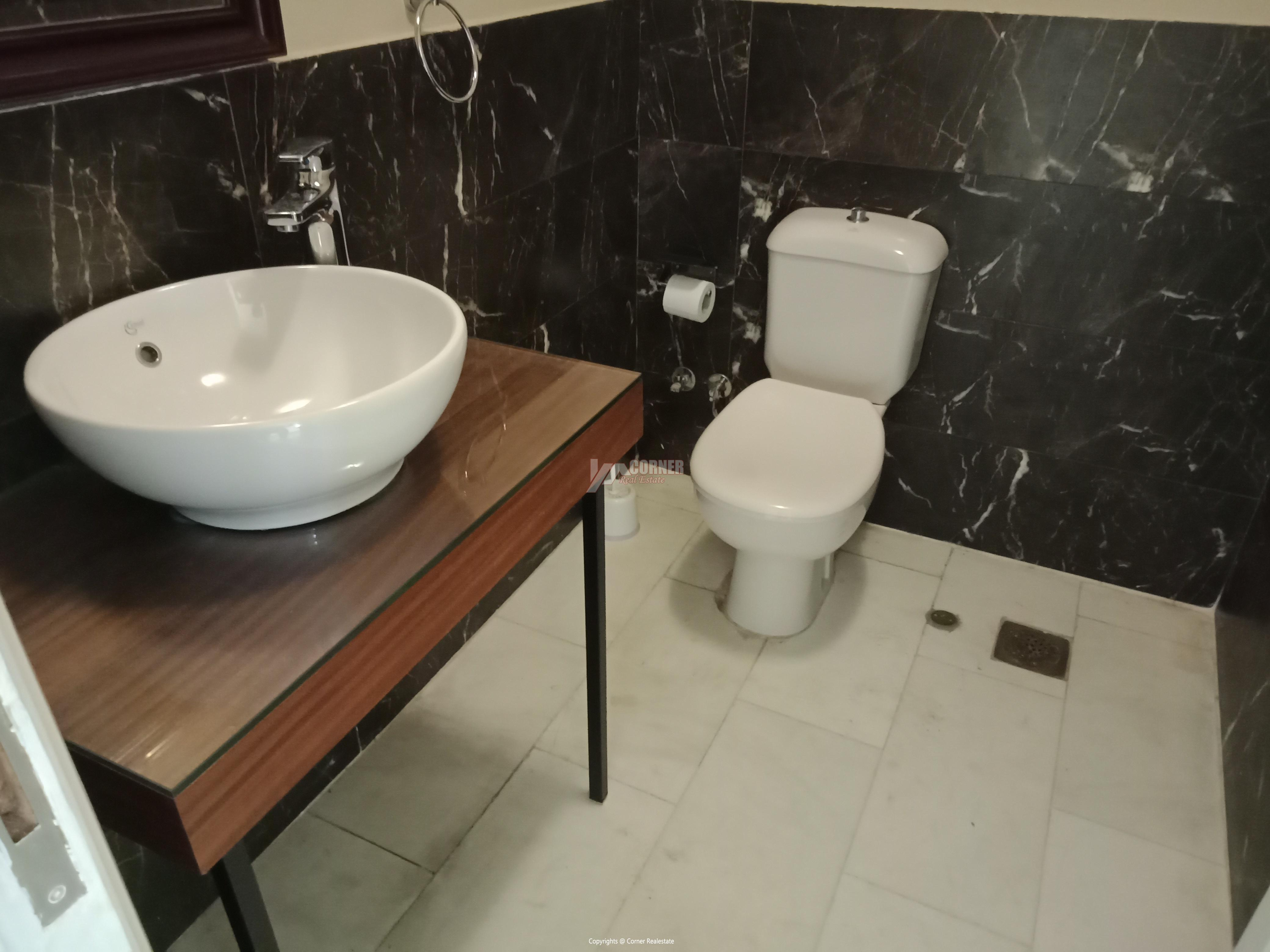 Penthouse For Rent In Maadi Degla,Furnished,Penthouse NO #3