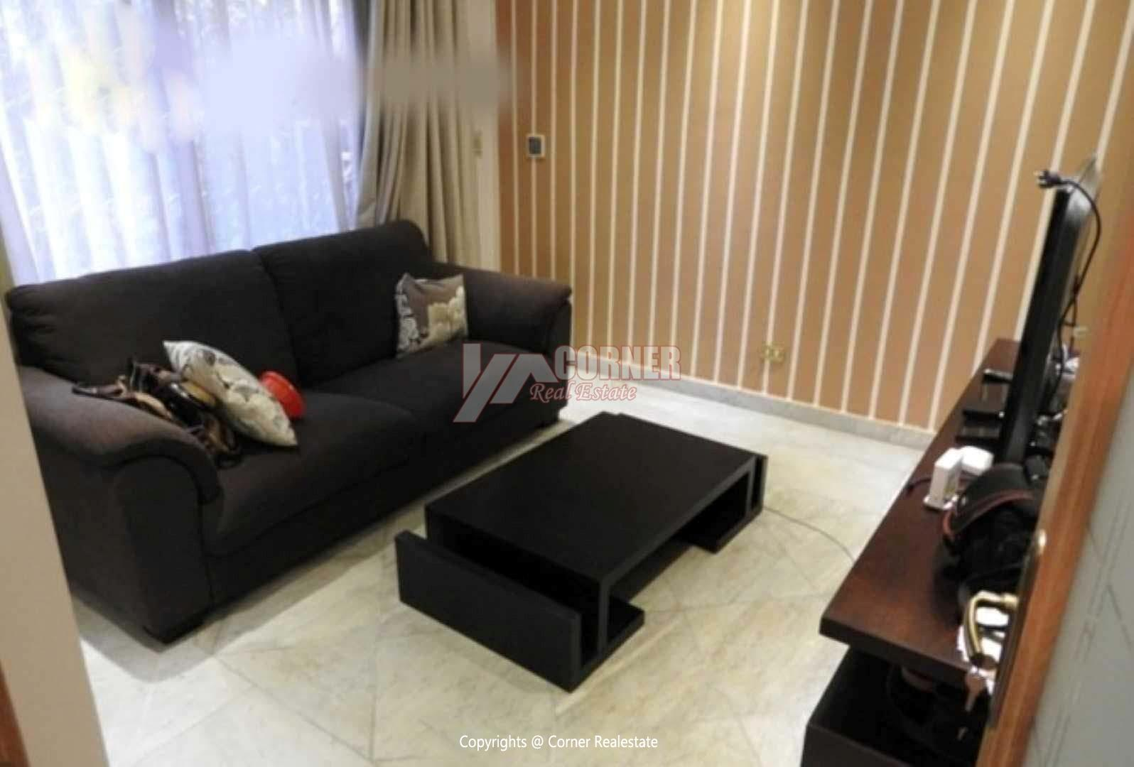 Ground Floor For Rent in Maadi Degla,Modern Furnished,Ground Floor NO #12
