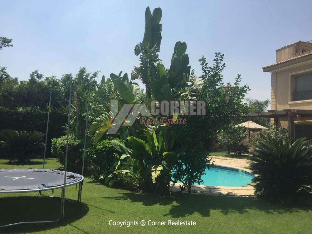 Apartment for Rent in Katameya Heights