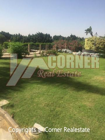 Villa for Rent in Katameya Heights Golf View