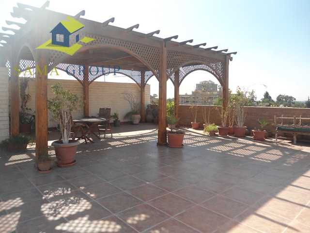 Furnished Roof top Apartment for rent in maadi