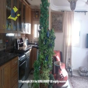 Furnished Apartment For Sale In Maadi
