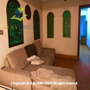 Modern Furnished Flat For Rent In New Maadi