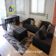 Modern Furnished Ground Floor Duplex For Rent In Maadi